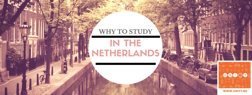Why choose to study in the Netherlands